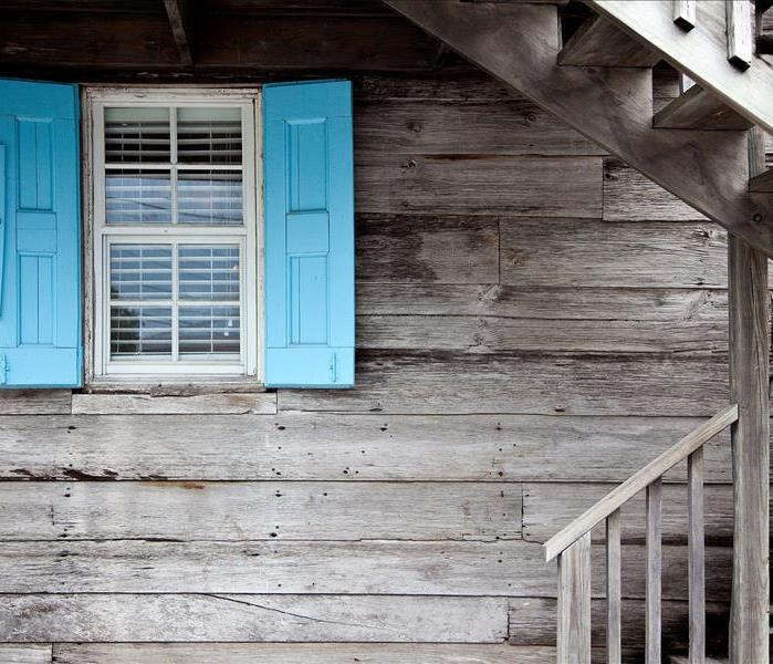 Mold Remediation What to do with mold in your windows