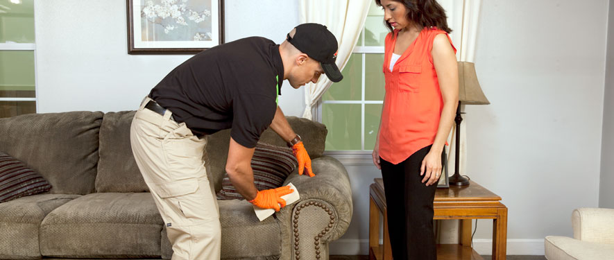 Corvallis, OR carpet upholstery cleaning