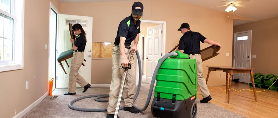 Corvallis, OR cleaning services